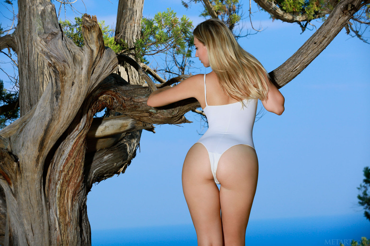 Long-legged blonde takes off her white bathing suit and climbs a tree