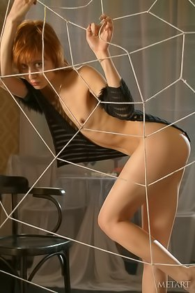Spider's web featured in a deep solo gallery with a redhead hoe Videos