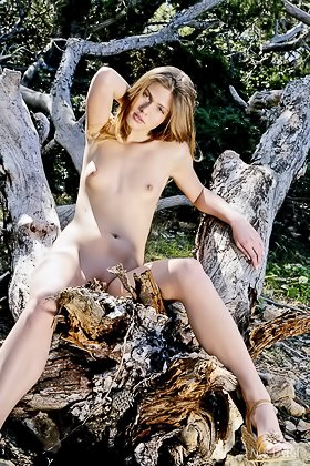 Long-legged brunette flashing her trimmed pussy in the woods Videos